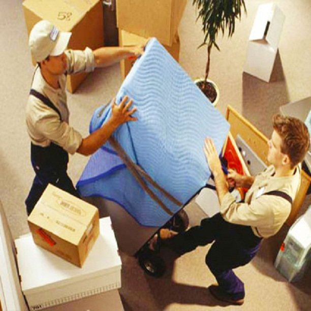 services-Removals-02.jpg