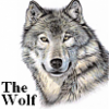 flowwolf