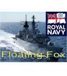 Floating Fox
